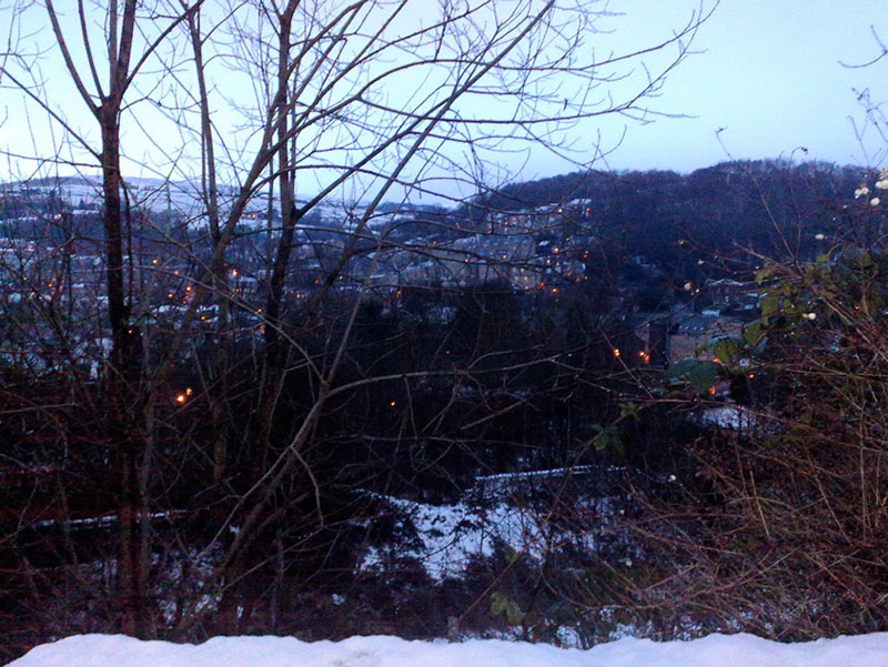 View from the shady hills