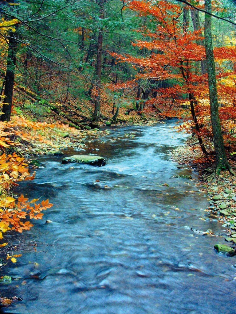 Flowing river in Autumn